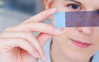 Nanotecnologia: saiba mais sobre essa tendência no desenvolvimento de novos alimentos