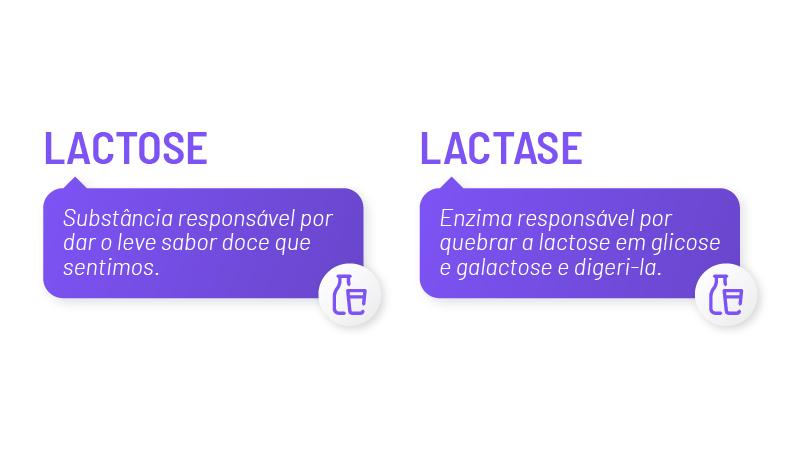 lactose e lactase